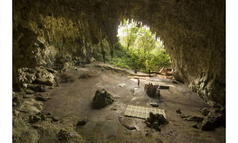 Fire discovery sheds new light on 'hobbit' demise