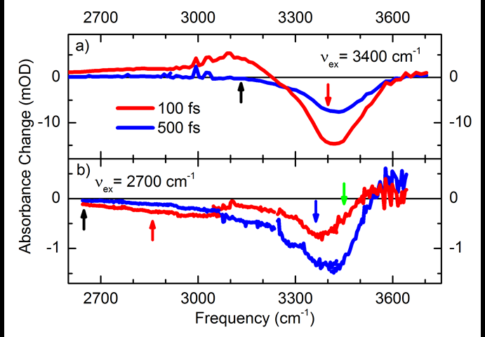 Fluctuating liquid structure induces ultrabroad infrared absorption—the hydrated proton on ultrafast time scales