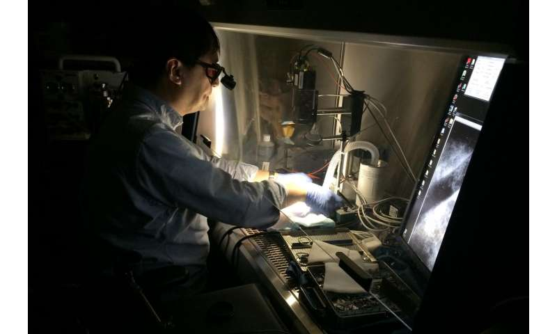 Glowing tumors light a path to cancer treatment