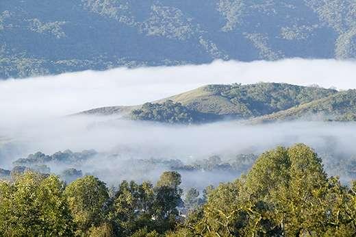 Hiding in Plain Sight: A Less-Explored Secret of Secondary Organic Aerosols