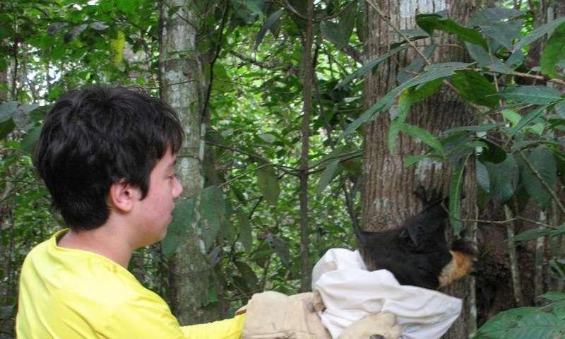 Improving safety for volunteer wildlife rehabilitators