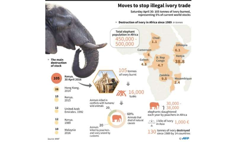 Kenya prepares to burn its ivory stockpile
