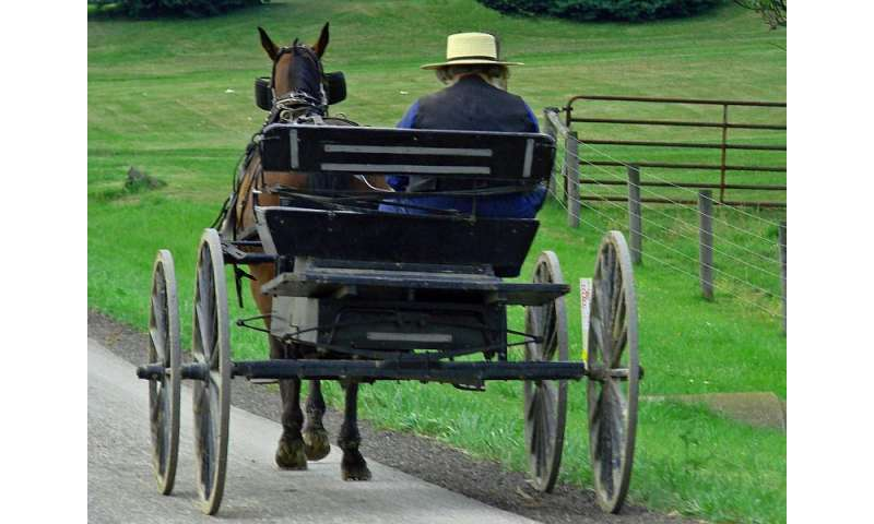 Measles outbreak among amish highlights need for vaccinations