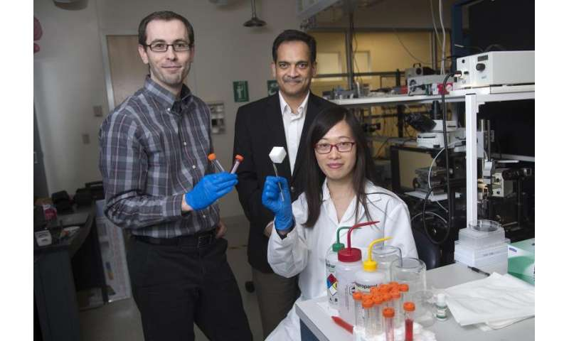 New environmental cleanup technology rids oil from water
