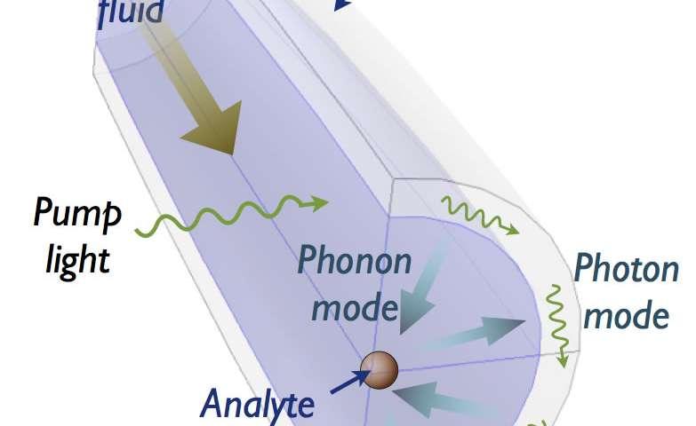 New photonic sensor opens the door to high-speed biodetection