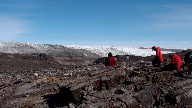 Oldest fossils point to thriving life on young Earth