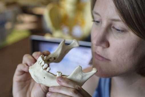 Professor studies dead people's teeth