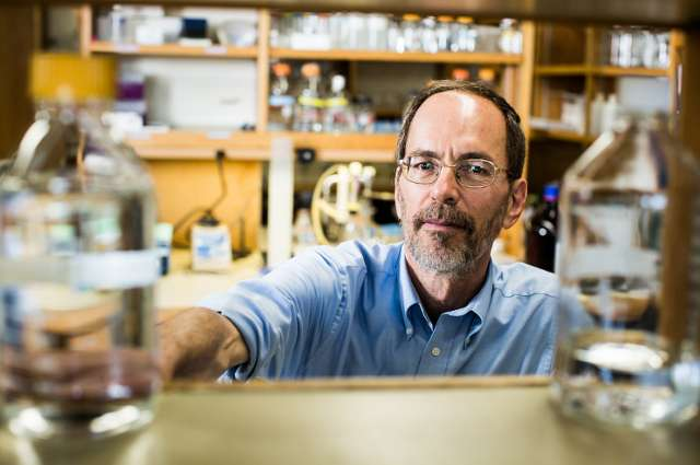 Researcher targets mechanism that allows cancer to spread