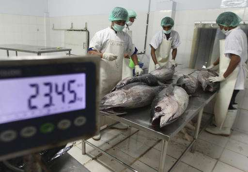Tech solutions to tackle overfishing, labor abuse at sea