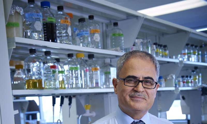 Temple researchers successfully excise HIV DNA from animals
