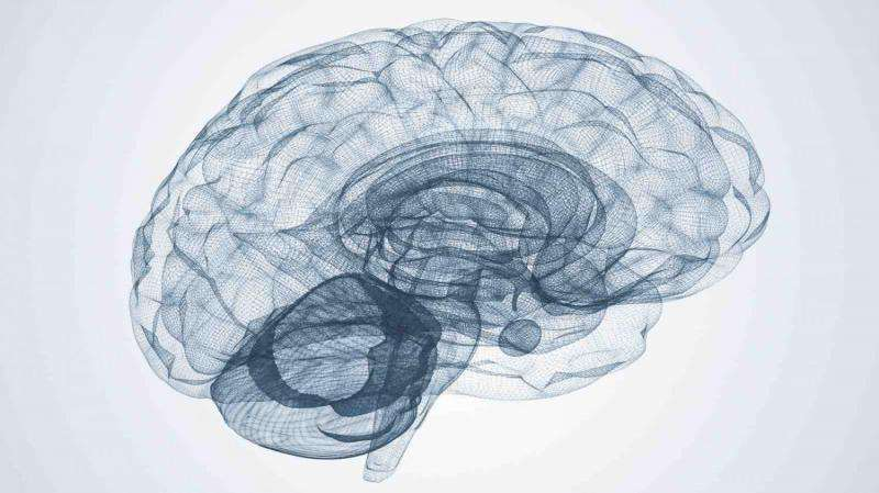 The link between nature, nurture and brain disorders