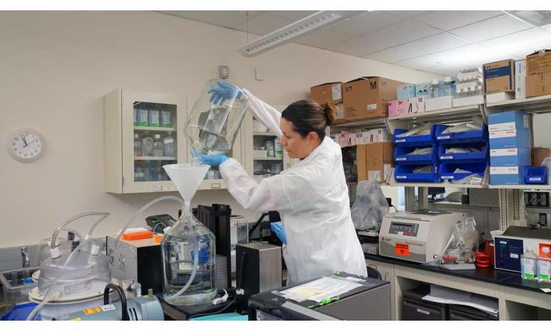 Vaccine candidates protect against Zika virus in rhesus monkeys