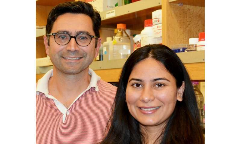 TSRI scientists discover how protein senses touch