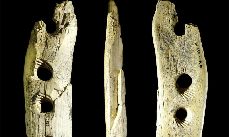 Researchers discover how rope was made 40,000 years ago