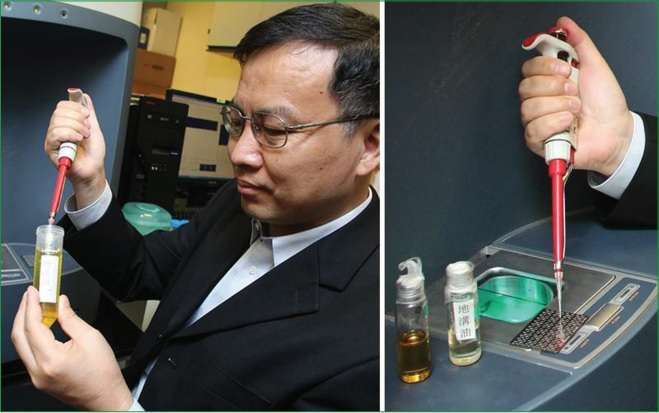 New method for rapid authentication of edible oils and screening of gutter oils