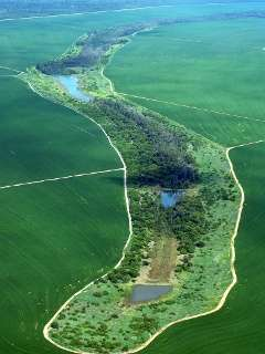 Climate change, dams, deforestation a vicious cycle for Amazon rivers, lakes