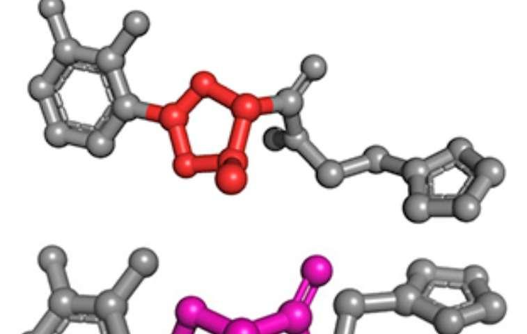 2-for-1 bacterial virulence factor revealed