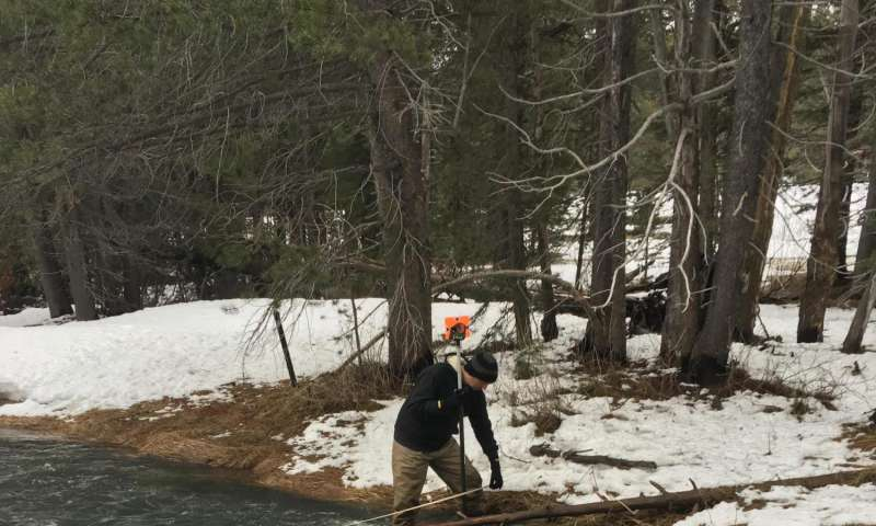Earlier snowmelt reduces forests' ability to regulate atmospheric carbon dioxide