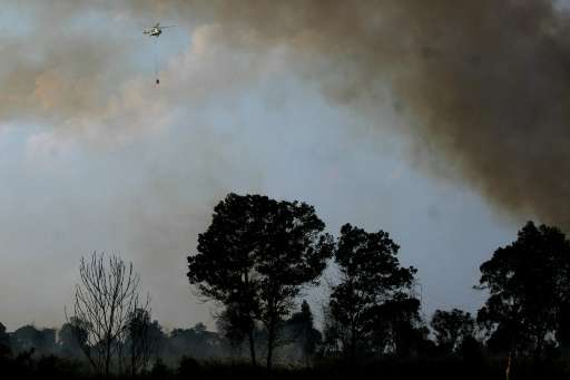 Forest fires in Ogan Ilir, Indonesia's South Sumatra province