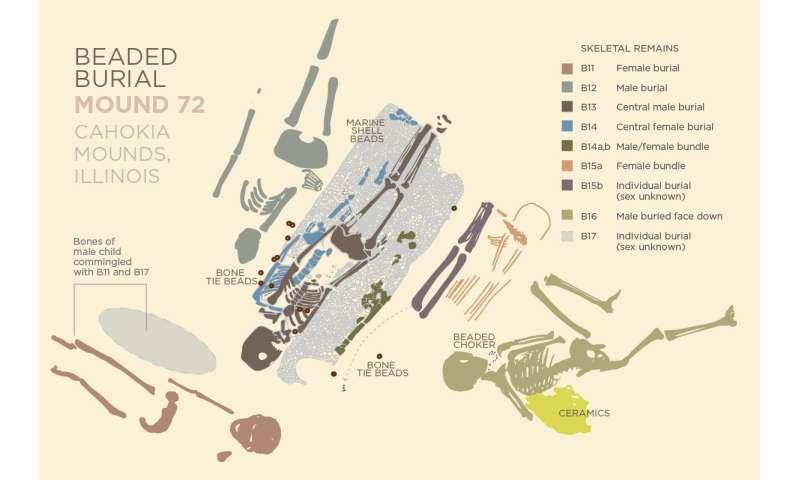 Fresh look at burials, mass graves, tells a new story of Cahokia