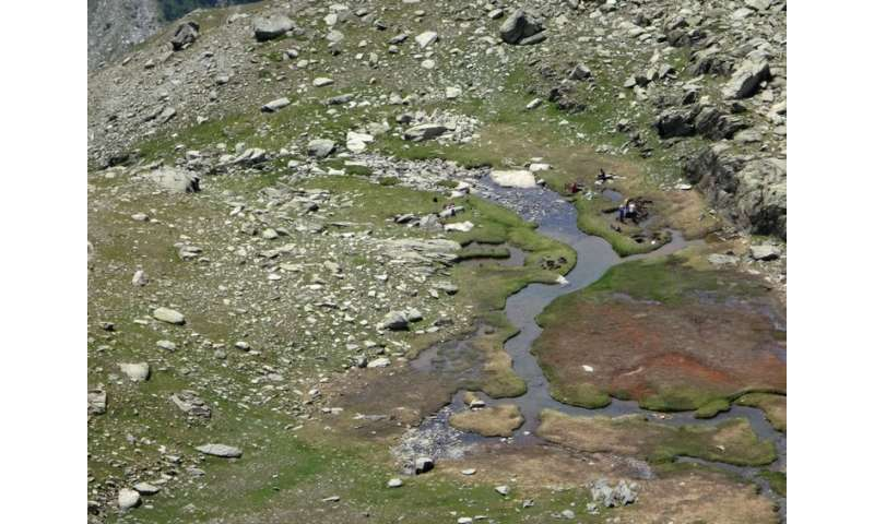 How ancient horse-dung bacteria is helping our team locate where Hannibal crossed the Alps