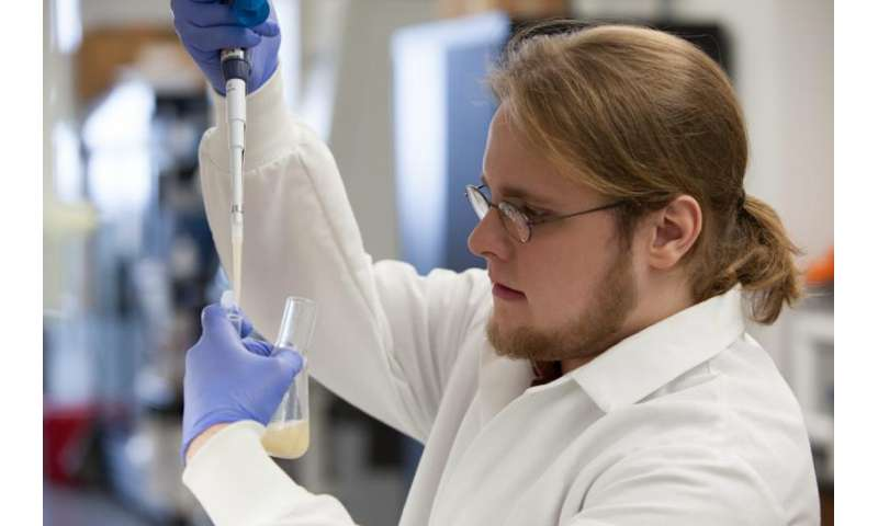 New method for bio-designing yeast could improve biofuel production