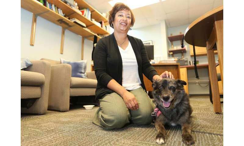 Researcher advocates rigorous breeding standards for canine welfare