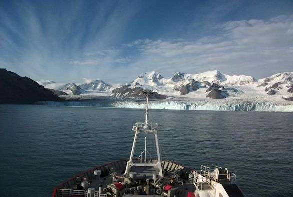 Study finds increase in Antarctic marine worm species