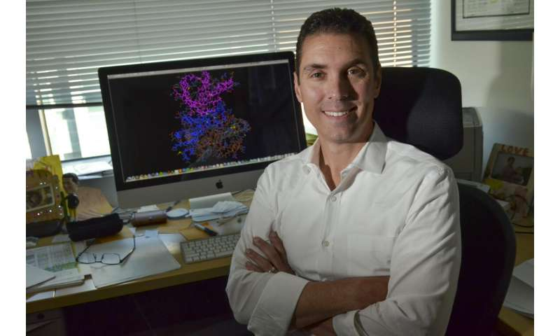 Study shows how TRK-fusion lung cancer escapes LOXO-101, offering new treatment strategies