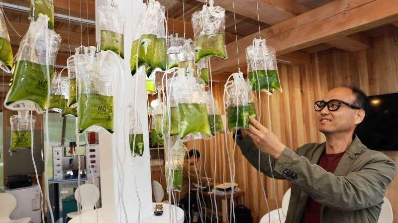 Turning human waste into next generation biofuel