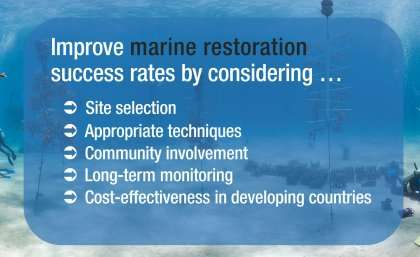 Researchers release 'ultimate guide' to coastal habitat rejuvenation