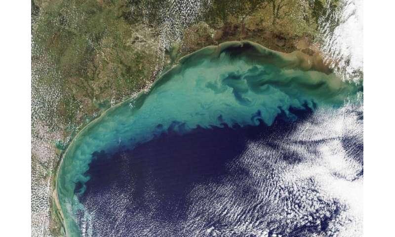 Researchers predict average 'dead zone' for Gulf of Mexico in 2016