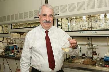 Understanding sulfur's rotten smell