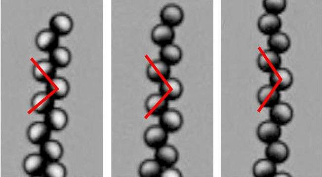 Asymmetrical magnetic microbeads turned into micro-robots