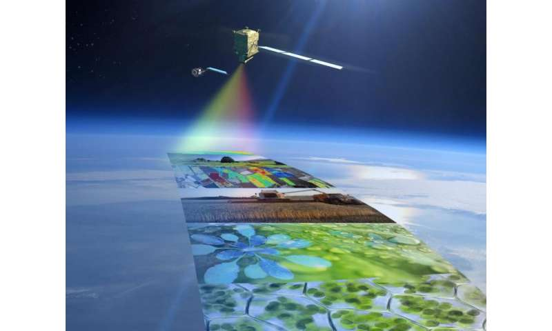 Fluorescence Explorer satellite takes on mutants