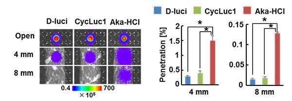 Illuminating detection of deep cancers