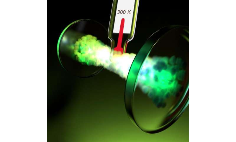 Measuring the heat capacity of condensed light