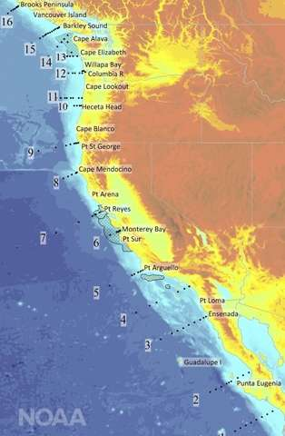 New West Coast mission investigates ocean acidification threat