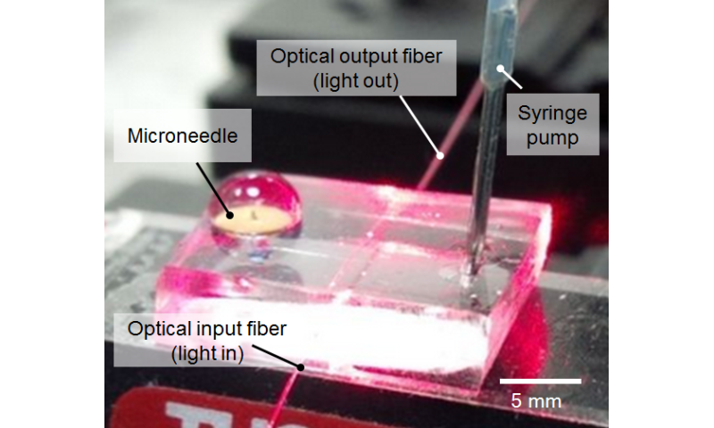 Scientists develop painless and inexpensive microneedle system to monitor drugs