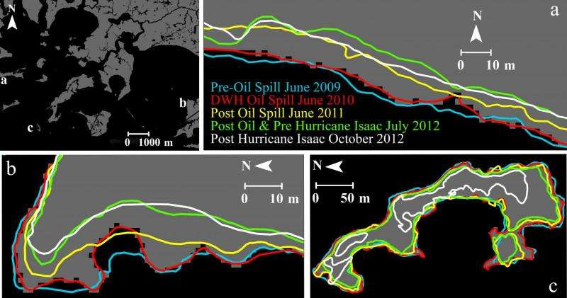 Study finds widespread land losses from Gulf of Mexico oil spill
