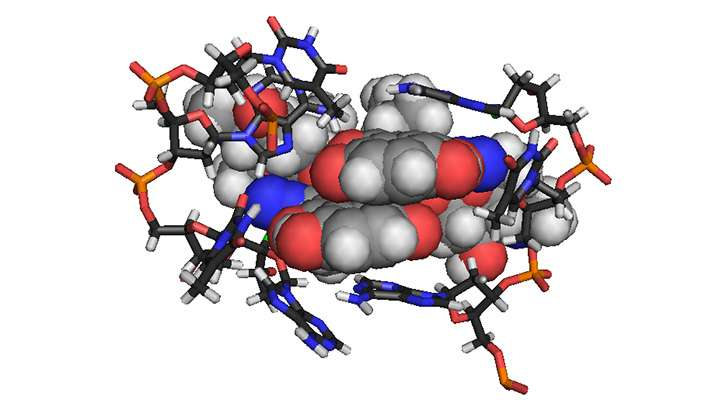 Understanding the cancer-killing properties of a chemical commando