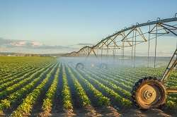 Researchers showcase their integrated and flexible smart irrigation system