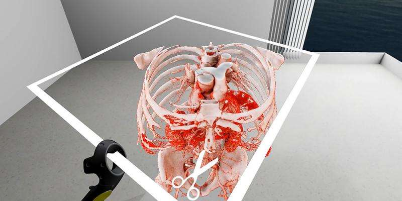 Virtual reality in medicine—new opportunities for diagnostics and surgical planning