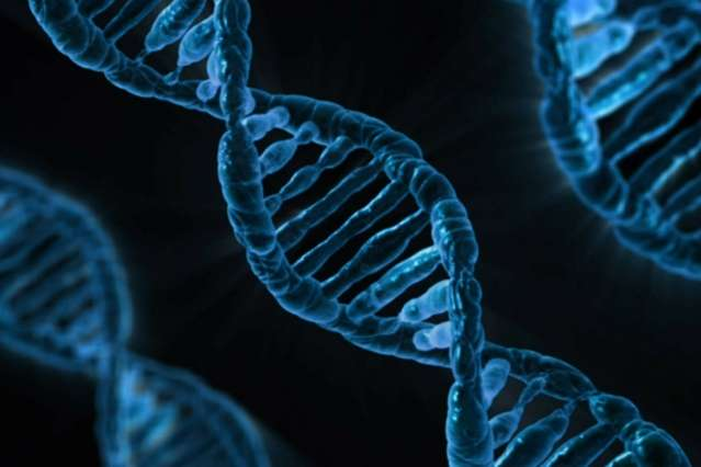 Researchers identify genome-modifying enzyme linked to Rett Syndrome