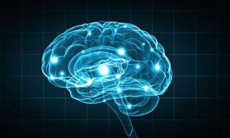 Researchers identify how a single gene can protect against causes of neurodegenerative diseases