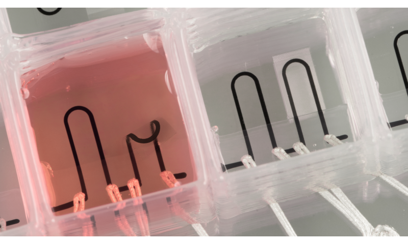 3D-printed organ-on-a-chip with integrated sensors