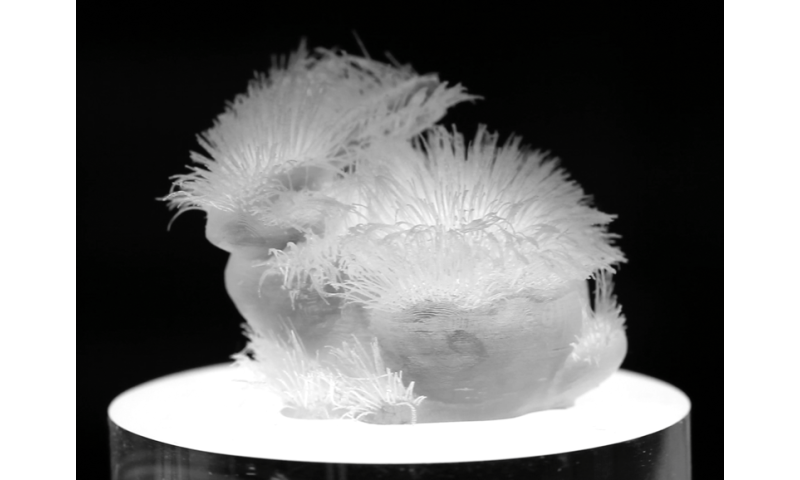 3-D printing hair structures opens up fascinating design space
