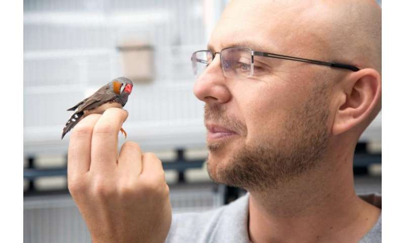 Climate change makes chicks hatch early