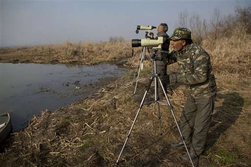 Indian Kashmir begins bird census at Himalayan wetlands