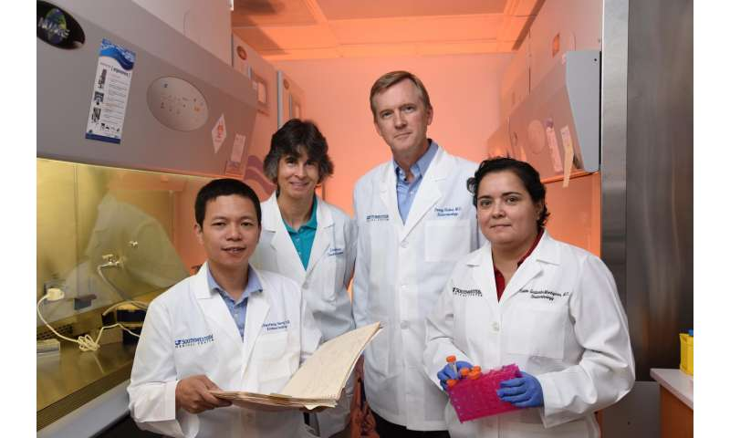 Research identifies protein that promotes the breakdown of fat